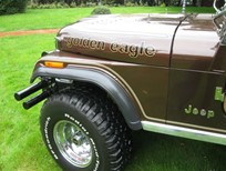 cj5 gold  marr  illinois 003.jpg