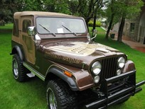 cj5 gold  marr  illinois 008.jpg